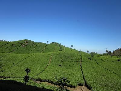 Travel Wisata Bandung