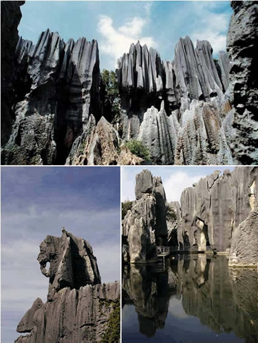 Stone Forest ,Yunnan, China