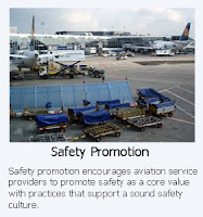 Aviation SMS Reporting Software requires safety promotion