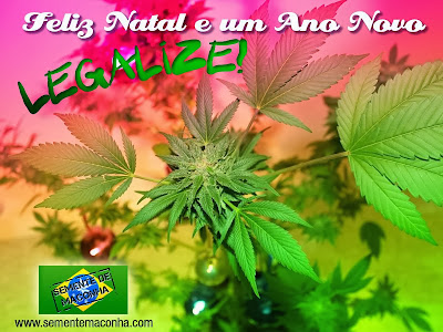 Feliz Natal para todos os maconheiros do Brasil