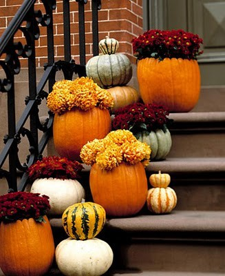 What Would Fall Be Without Pumpkins And Colorful Mums