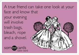 True Friend SomeeCard
