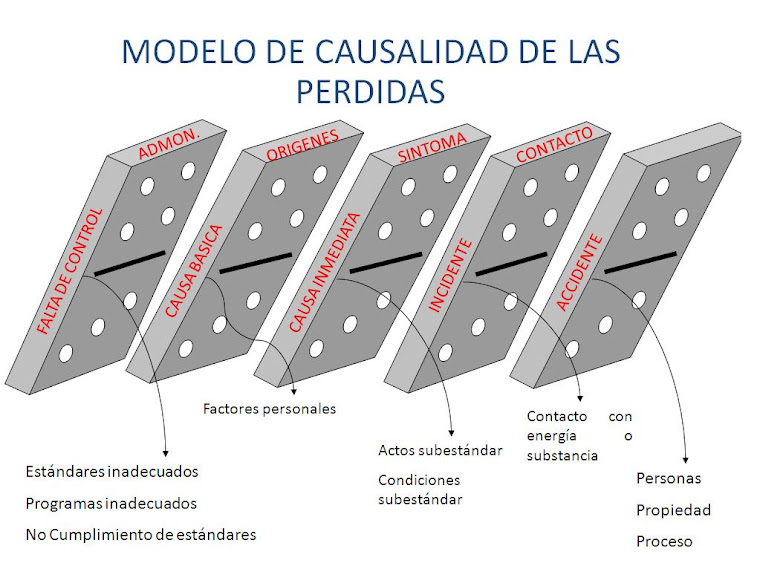 EFECTO DOMINO DE LAS PERDIDAS