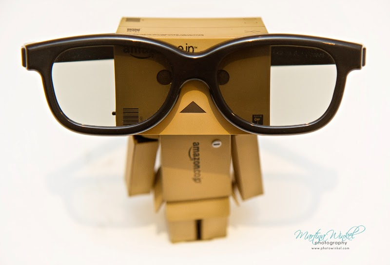 the smart amazon danbo