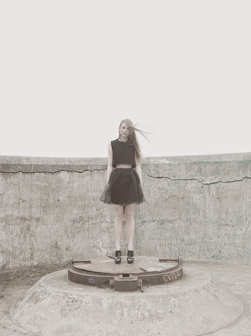 alyssa nicole, alyssa nicole signature collection, little black dress, couture, san francisco style, lookbook, pleated skirt, crop top, black pleated skirt, organza skirt, alyssa nicole skirt,