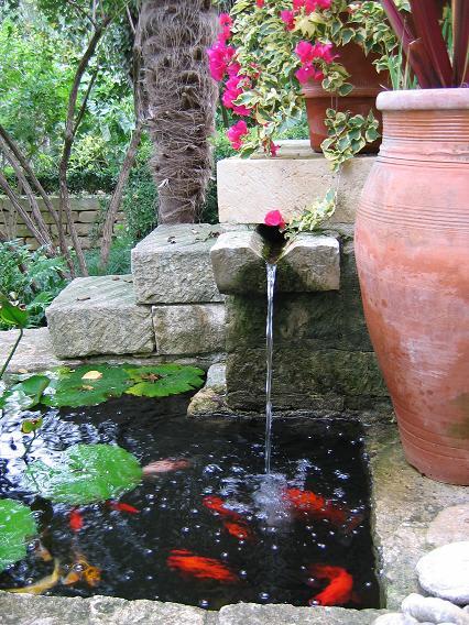 Tips desain kolam ikan mungil rumah minimalis foto for Simple koi pond