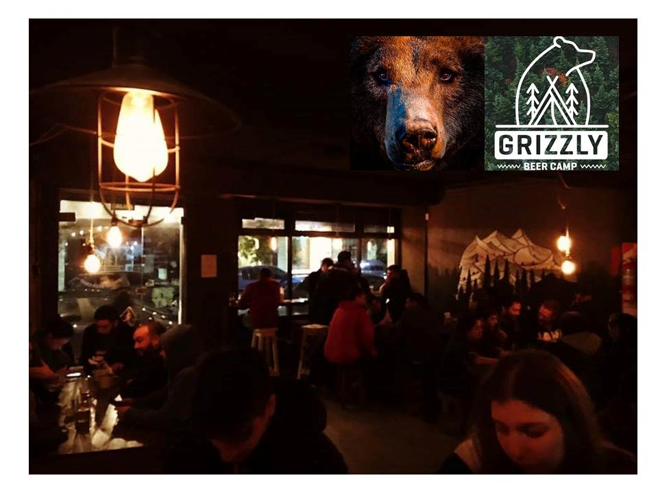 Grizzly Beer Camp