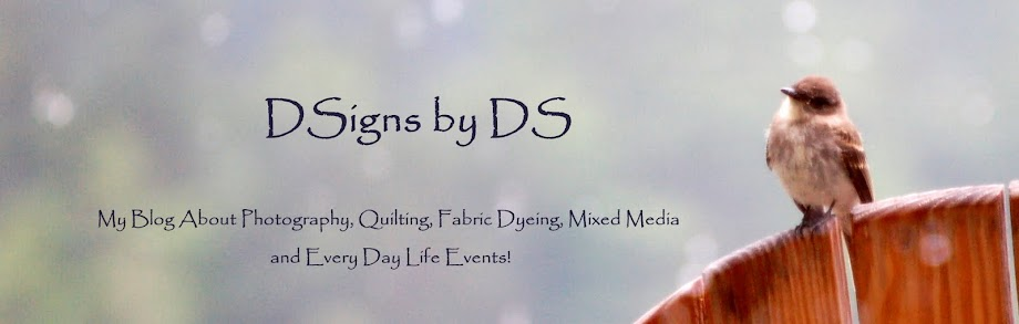 DSigns by DS