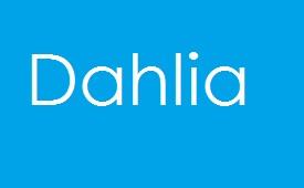 Drama Dahlia Episod Akhir (Episod 40)