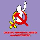 COLETIVO FEMINISTA CLASSISTA ANA MONTENEGRO