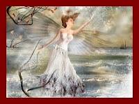 Com asas