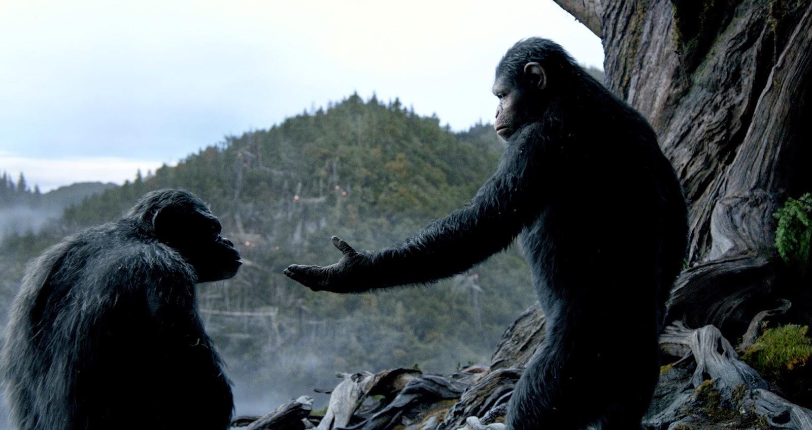 ดูหนัง-Dawn-of-the-Planet-of-the-Apes-รุ่งอรุณแห่งอาณาจักรพิภพวานร