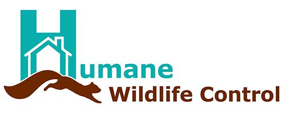 Humane Wildlife Control