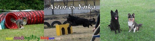 Ivett és Astor,Ynka