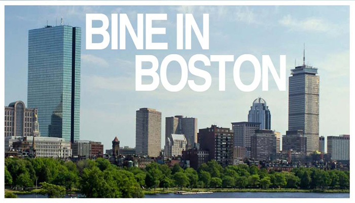 Bine in Boston
