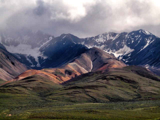 Alaskan Colors, Mountain Range in Denali National Park, Alaska, #Denali #Alaska