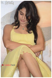 Andrea Jeremiah  Pictures in Sleeveless Short Dress Tadakha Movie Press Meet  0020