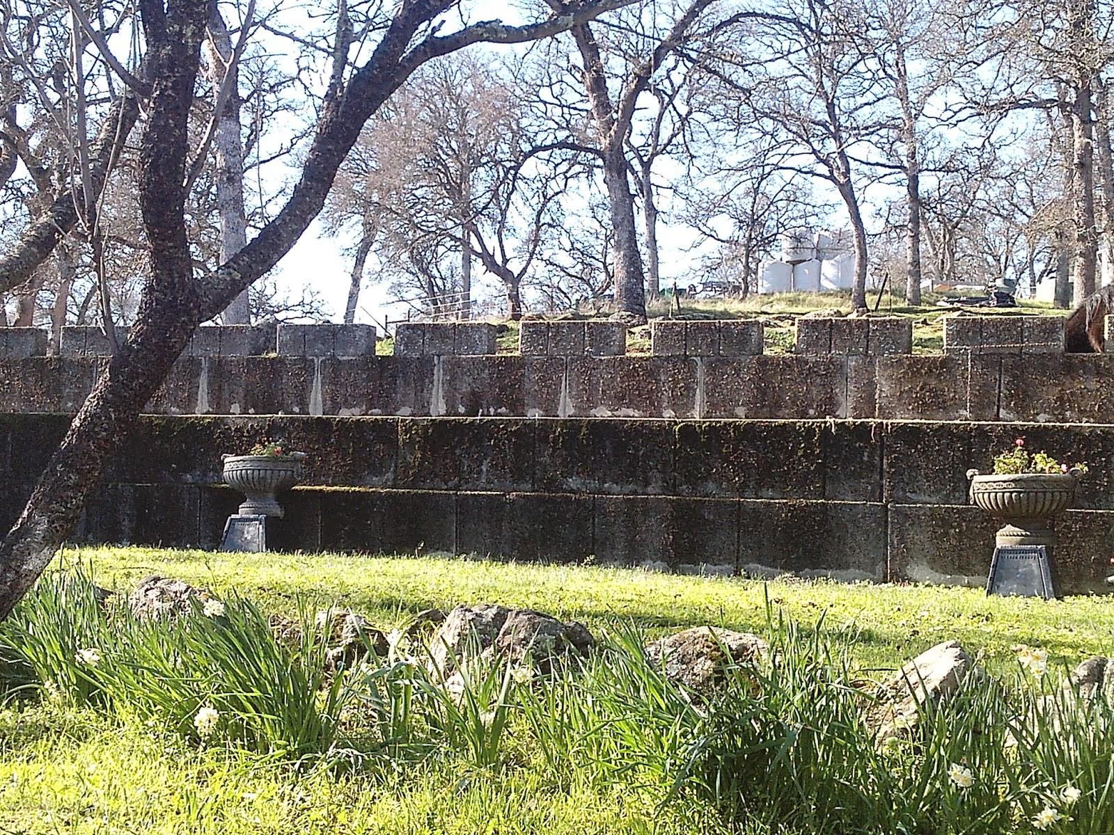 Castle gardener good ideas stone by stone pool garden for Castle gardens pool