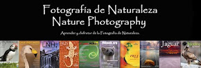 Blog con revistas y otras cosas interesantes para fotógrafos de naturaleza