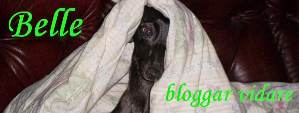 Belle bloggar vidare