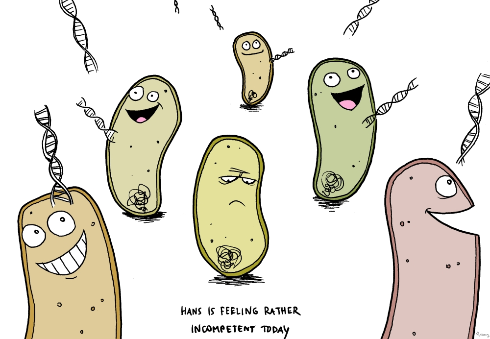 Cartoon about competent bacteria