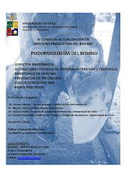 Curso Podopatologías del Bovino