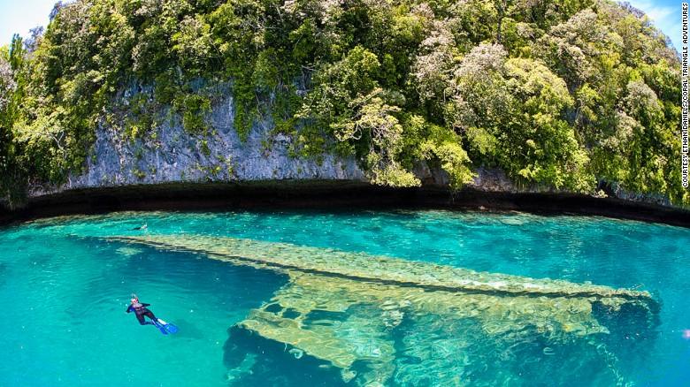 Palau (Micronesia)