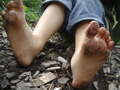 http://4.bp.blogspot.com/-c1l2fZmuE04/UF0gDVQ7CyI/AAAAAAAAEgQ/4SJwB2ZPCHo/s400/maya+bean+and+seed+saving+sept+21+034.jpg