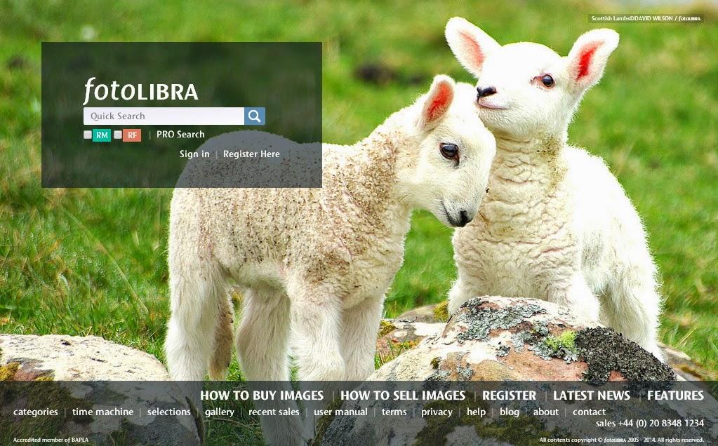 Jual Koleksi Gambar-Gambar Unik Anda Di Situs PhotoLibra