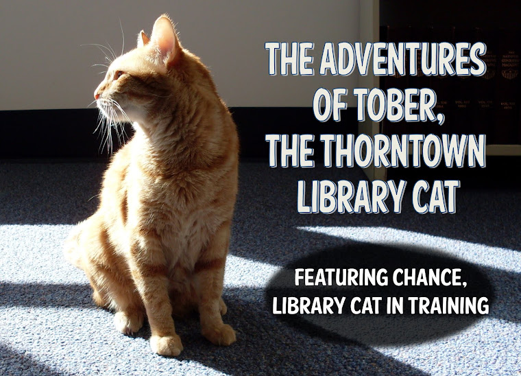 The Adventures of Tober, the Thorntown Library Cat