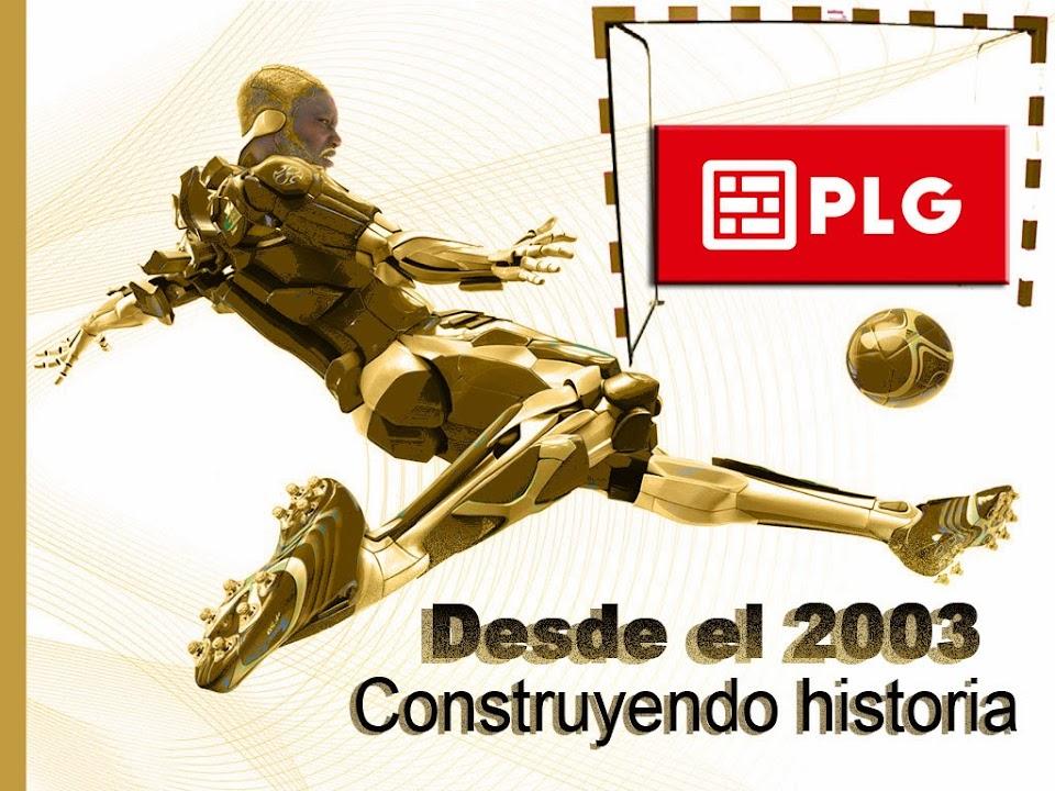 PLG CONSTRUCTORES YUNQUERA