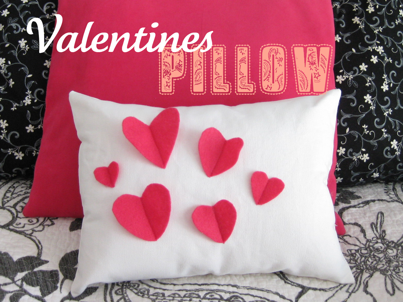Hems and Haws: Valentines Day Pillow