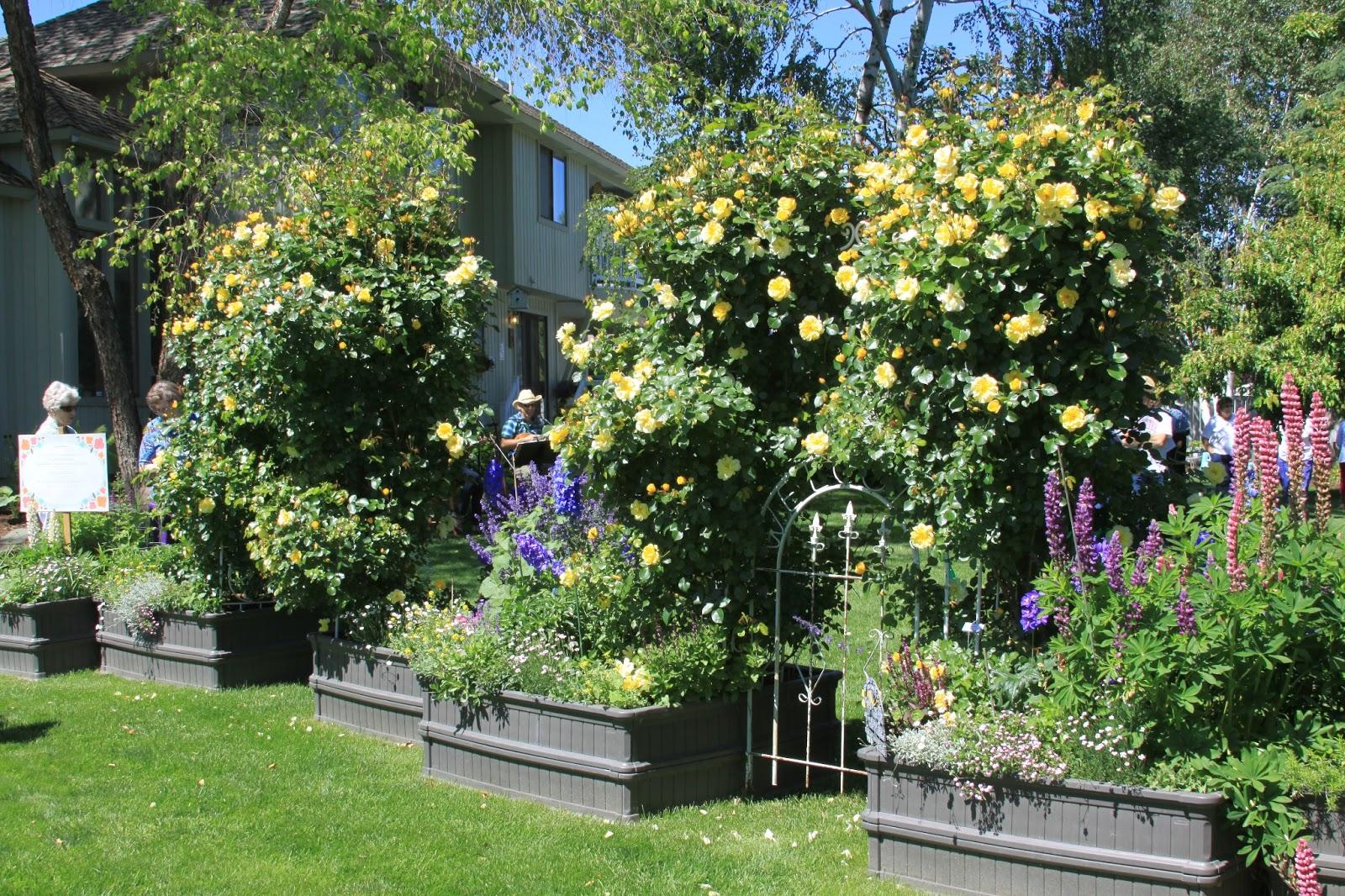 Incroyable Garden Trellises