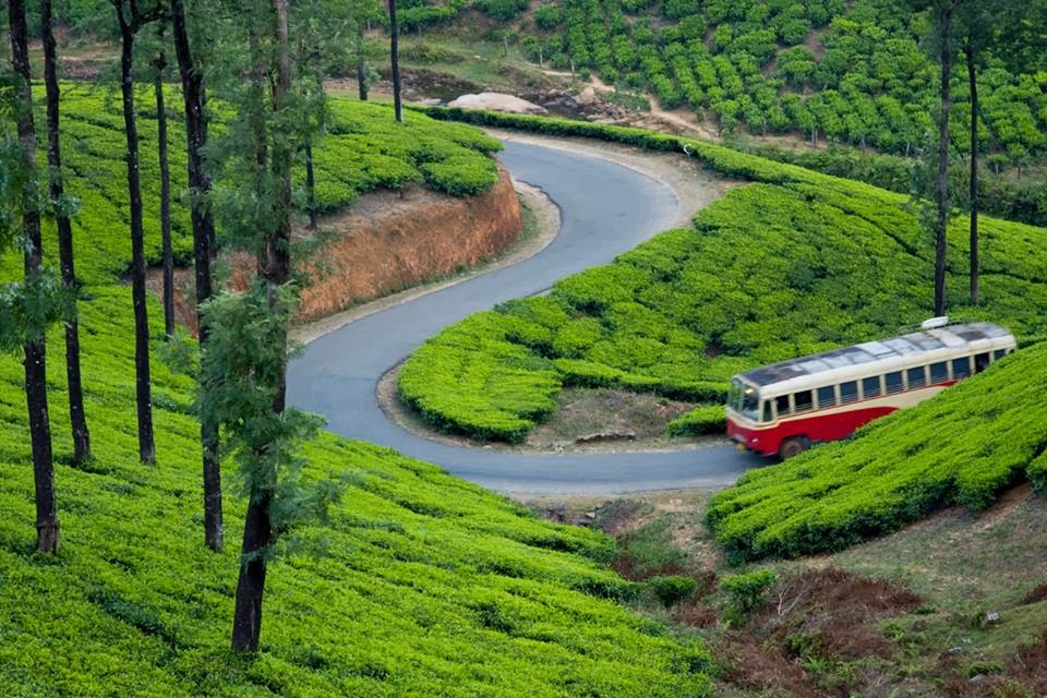 Vagamon India  city images : Vagamon Kerala India Places