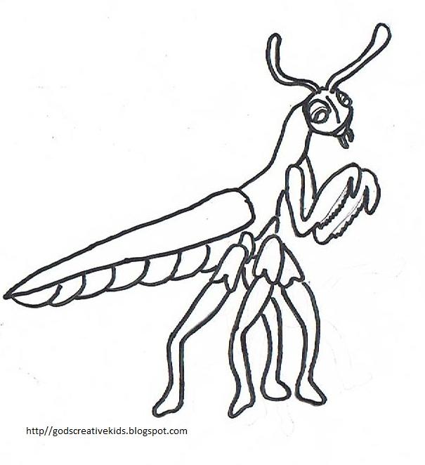 Praying mantis coloring page for Praying mantis coloring page