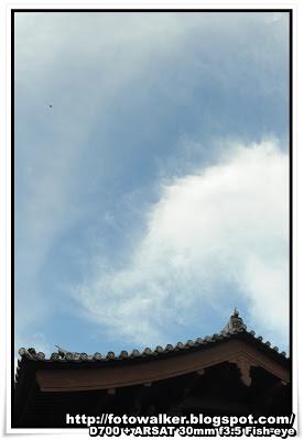 志蓮淨苑 (Chi Lin Nunnery)