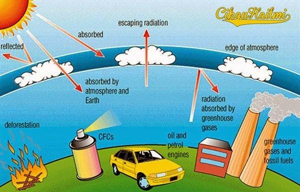 Pendidikan Alam Sekitar Pdptv Giatmara Rumah Hijau