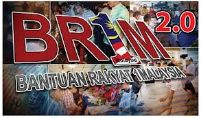 BR1M BRIM