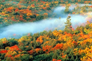 Porcupine Mountains Wilderness State Park hosts fall color chairlift rides