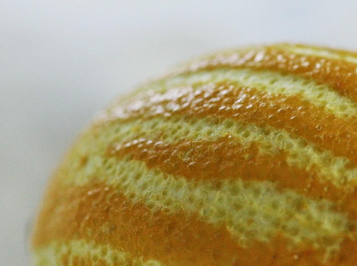 Macrophotography lemon peel