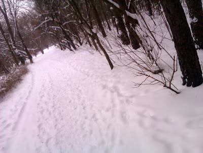Jak to chciało mi się pobiec więcej niż 10 km