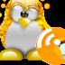 Reparar Igualdad es una modificación de la distribución Ubuntu GNU/Linux en su versión minimal-remix.