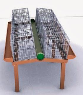 kandang bebek baterai untuk ternak images | ternak kenari, ternak kambing, ternak bebek, ternak lele, budidaya ikan lele, ikan hias, gambar ikan | UsahaTernak