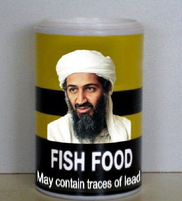 http://4.bp.blogspot.com/-c3zAs4kqtnU/TcQX9ZBE6fI/AAAAAAAAAu8/3pkdmVJYWN0/s1600/OBL+fish+food.JPG