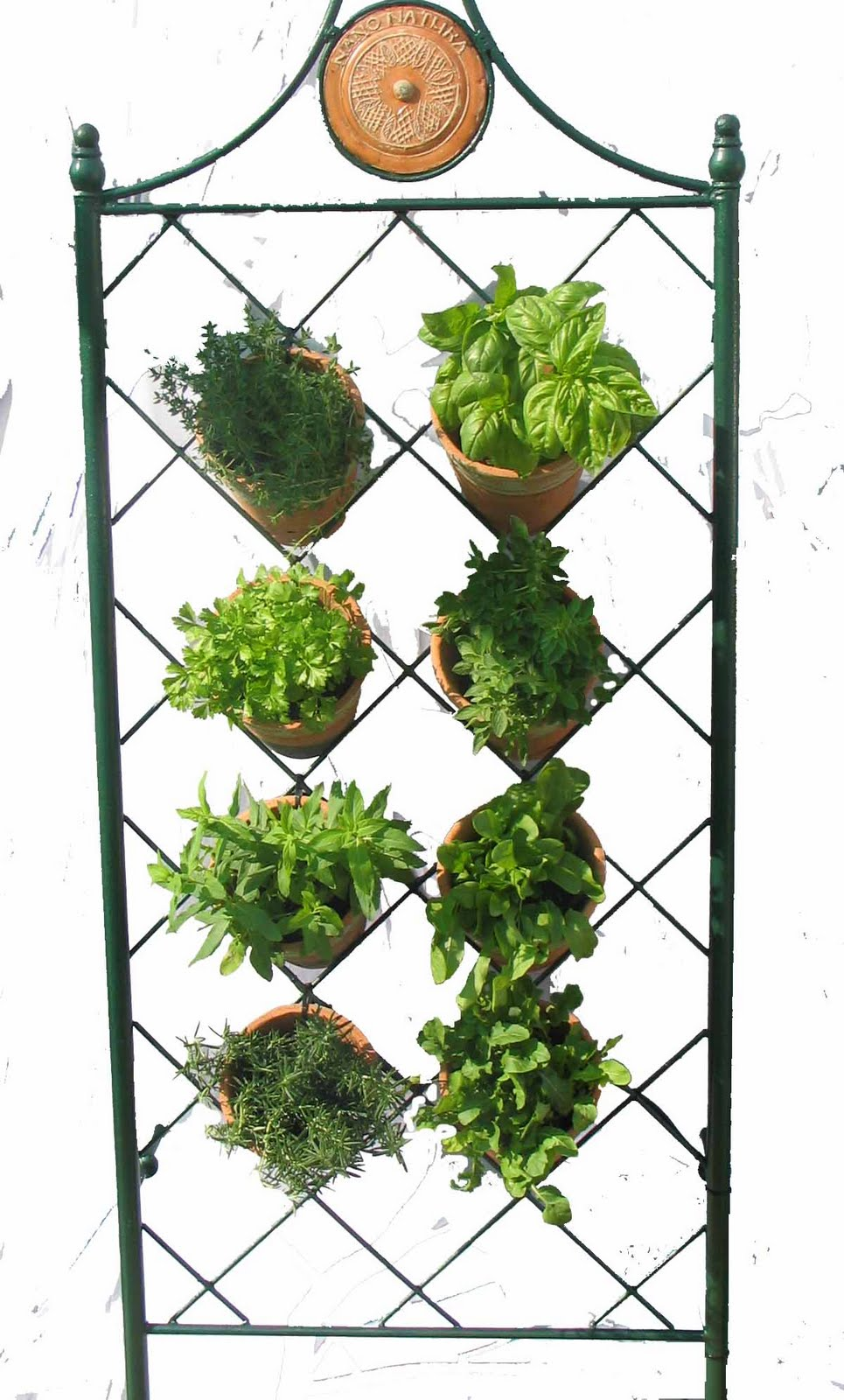 Green Home Is Now Supplying Vertical And Hanging Gardens