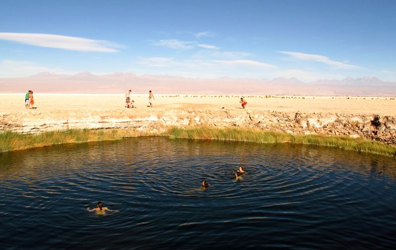 """The Ojos del Salar """"The Eyes of the Salt Flat"""" Two perfectly round pools in the middle of a wide expanse of cracked earth, sand and brittle clumps of grass."""