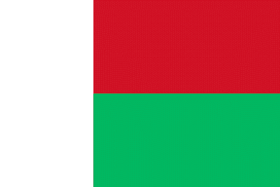 Download Madagascar Flag Free