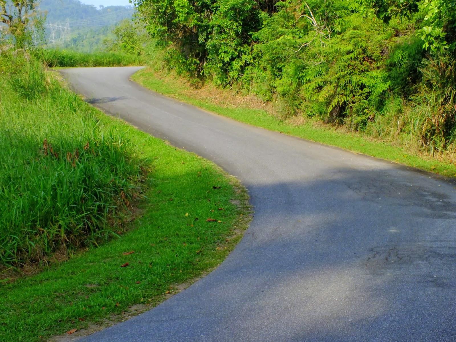 http://aprendendocomasimagens.blogspot.com/2013/10/uma-caminhada-ate-o-frescor-da-natureza.html - Até mesmo em uma pequena jornada com andanças obstinadas, eu perpetuo a afeição por cada influência vinda da Natureza. Com a alma elevada a sintonia Divina...