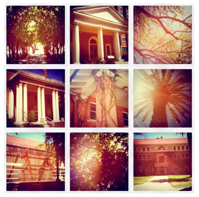 university of arizona campus. of Arizona campus is.