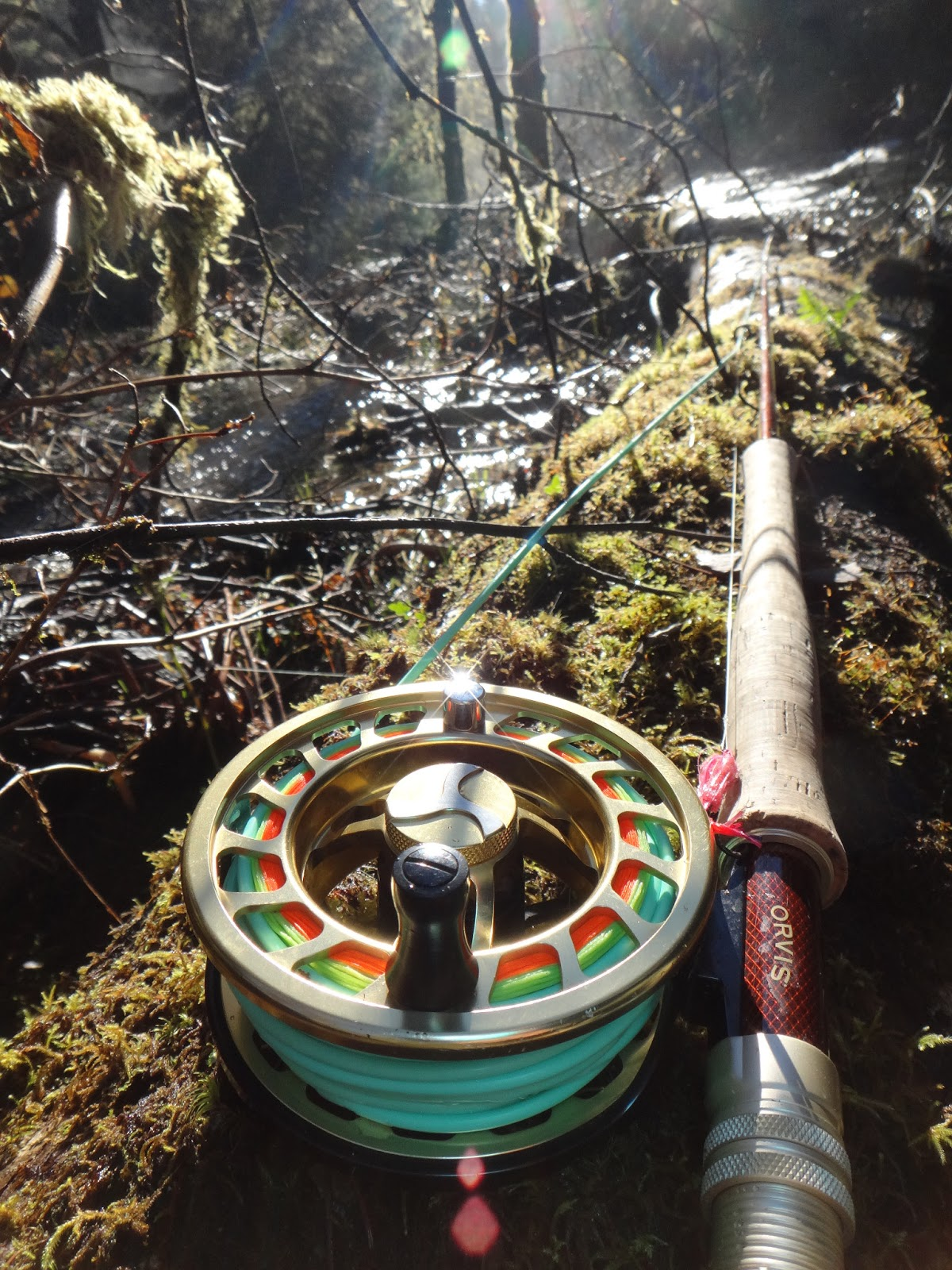 Orvis Access Switch Rod And Mirage Reel With Airflos 480 Grain Skagit Head
